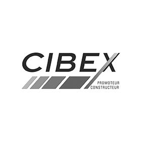 Logo Cibex groupe