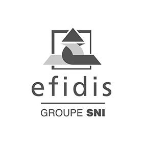 Logo EFIDIS Groupe SNI